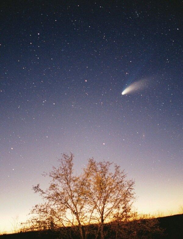 关于彗星你可能不知道的十件事情