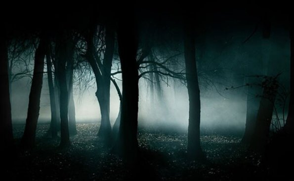 Why are humans not found aliens? Why does the dark forest theory make people think hard?