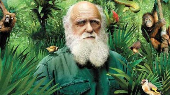 如果达尔文的《进化论》是对的,那么人类可能是可见宇宙中唯一的智慧生物