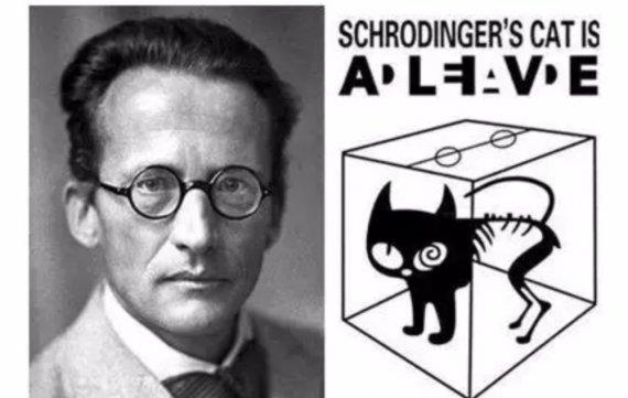 天驱科普时——薛定谔的猫与量子叠加态(上)